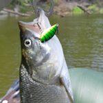 Портал VOB58 - отзывы, отчеты о рыбалке, секреты мастерства, статьи, обзоры. Всё о воблерах, блеснах и балансирах.
